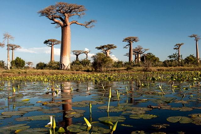 Madagascar : Circuit Confidentiel Madagascar
