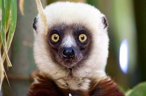 Circuit Confidentiel Madagascar + Ifaty