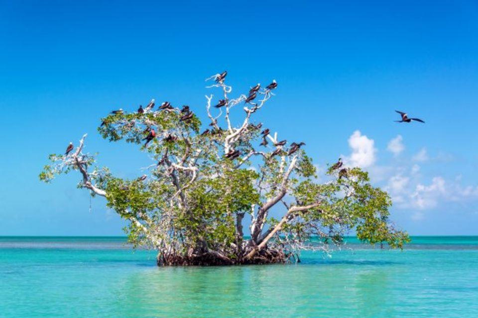 Circuit Beautés Mayas et plage des Caraïbes Cancun & Riviera Maya Mexique