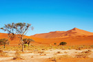 Premiers Regards Namibie