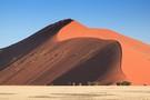 Les Incontournables de la Namibie : entre Désert et Safari