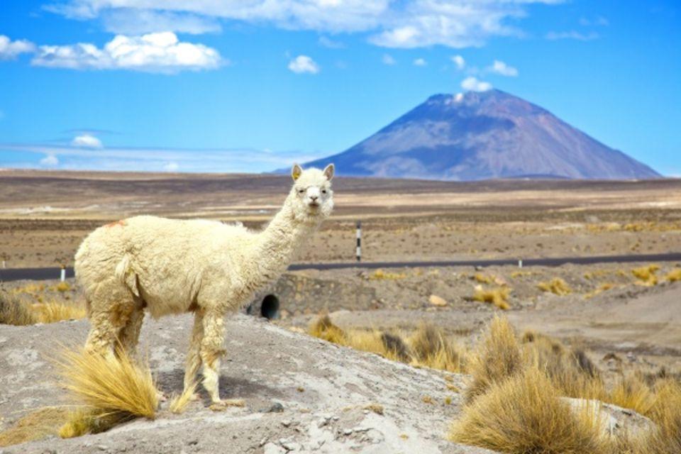 Circuit Splendeurs du Pérou & Extension Nazca Amerique Latine Perou