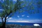 Réunion Saveur Nature