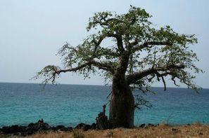 Sao Tome-Sao Tome, Circuit Saveurs et couleurs de Sao Tome