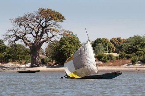 Senegal-Dakar, Circuit Merveilles de la Mangrove 3*