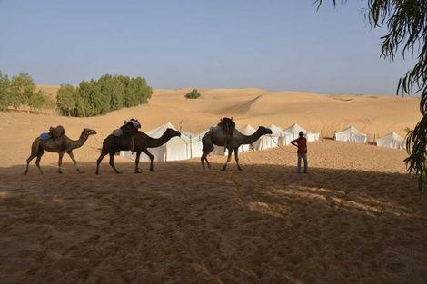 Senegal-Dakar, Circuit Sénégal Hors sentiers battus 4X4 3*