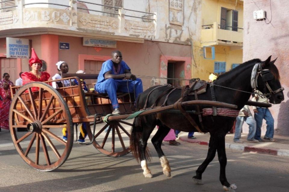 Circuit Les Chefferies du Sénégal - 6 sites UNESCO Afrique Senegal