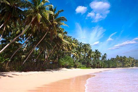 Sri Lanka-Colombo, Circuit Trésors & plages du Sri Lanka + extension balnéaire
