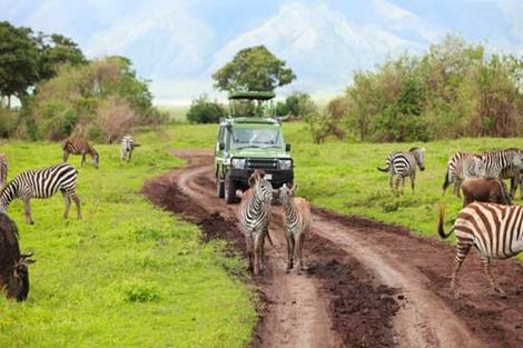 Tanzanie-Arusha, Circuit Premiers regards Tanzanie + Zanzibar