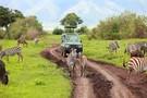Premiers regards Tanzanie + Zanzibar
