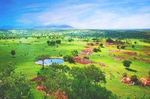 Tanzanie-Kilimanjaro, Circuit Safari Swala + extension Zanzibar