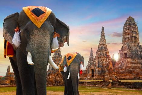 Thailande-Bangkok, Circuit Les Essentiels de la Thaïlande & farniente à Koh Samui au Samui Palm Beach 4*