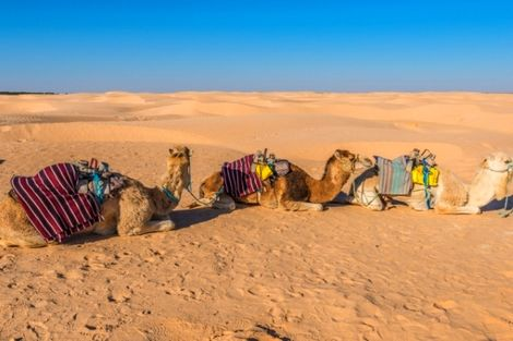 Tunisie-Djerba, Circuit Aventure 4X4 Entre Oasis Et Ksour 4*