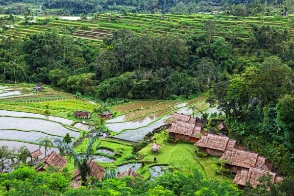 Bali Générique Combiné circuit et hôtel - Circuit 4*/5* + Prama Sanur Beach 4* Sup Denpasar Bali
