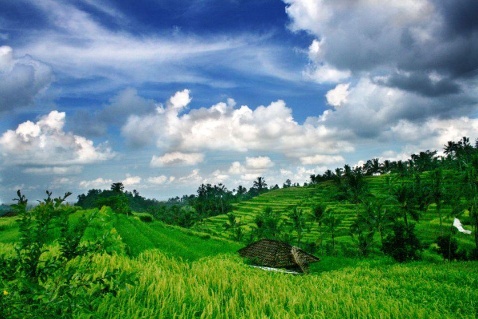 Combiné hôtels - Bali, l'île des Dieux Denpasar Bali