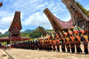 Bali-Denpasar, Combiné circuit et hôtel - De Bali aux Célèbes 3* + Sanur Paradise 4*