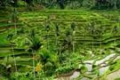 Bali - Denpasar, SOLEILS DE BALI 5*