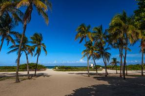 Etats-Unis-New York, Combiné hôtels New York & Miami 4*