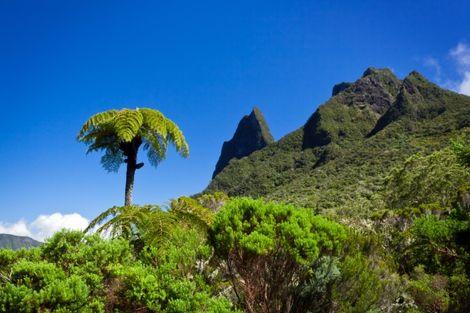 Reunion-Saint Denis, Autotour Découverte Réunion  2* + Île Maurice à l'hôtel Le Palmiste 3*