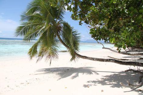 Seychelles-Praslin, Croisière Sisters Dream