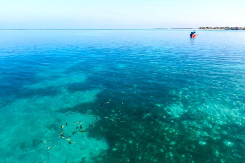 Croisière Maldives Dream Baa & Raa Premium Océan indien et Pacifique Maldives