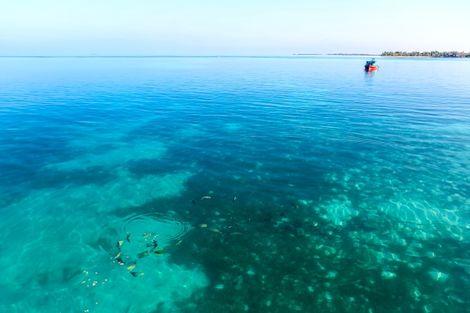 Maldives-Hulhumale, Croisière Maldives Dream Baa & Raa