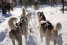Séjour de l'avent à Ivalo - Arctic Club Ivalo