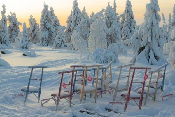 Paysage Hôtel Arctic Club Savukoski Ivalo Finlande