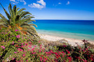 Nos bons plans vacances Fuerteventura : Hôtel SBH Club Paraiso Playa 4*