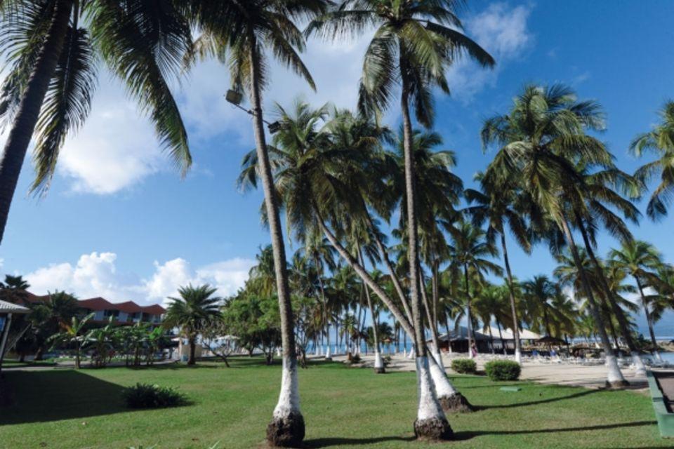 Hôtel Fleur d'épée Gosier Guadeloupe