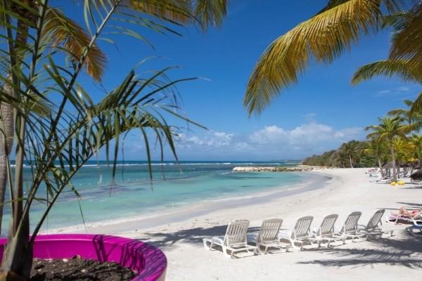 Plage - Pierre et Vacances Club Sainte-Anne Hotel Pierre et Vacances Club Sainte-Anne3* Pointe A Pitre Guadeloupe