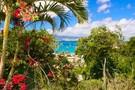 Iles Grenadines : Hôtel Karibea Camelia