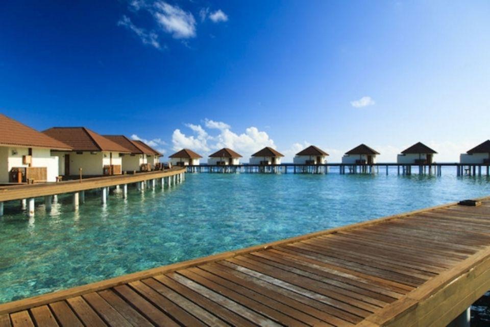 Club Bravo Club Alimatha Male Maldives