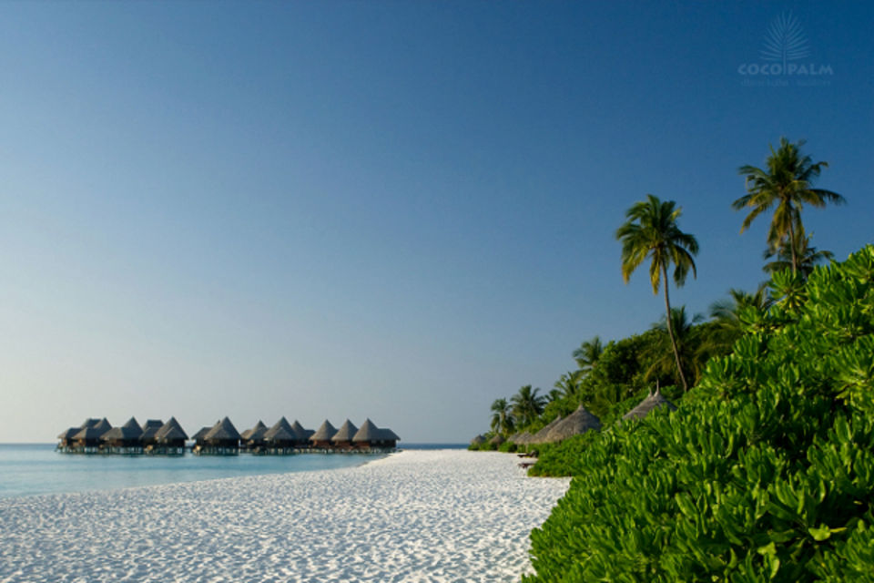 Hôtel Coco Palm Dhuni Kolhu Male Maldives