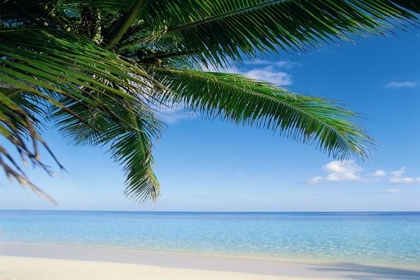 plage - Hanifaru Stay Hotel Hanifaru Stay3* Male Maldives