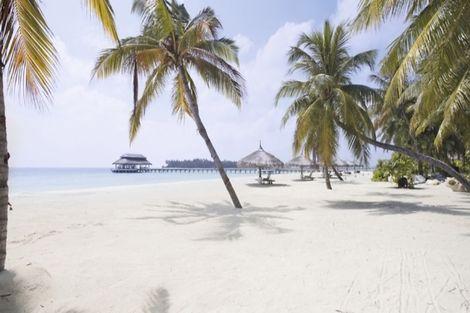 Maldives-Male, Hôtel Kihaa Maldives 4*