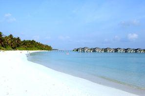 Maldives-Male, Hôtel Sun Island Resort 5*