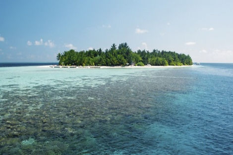 Maldives-Male, Hôtel Vilamendhoo Island Resort & Spa 4*