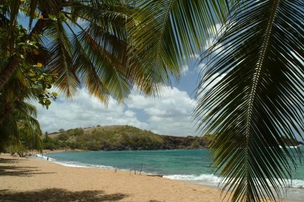 plage - La Goelette Résidence hôtelière La Goelette Fort De France Martinique