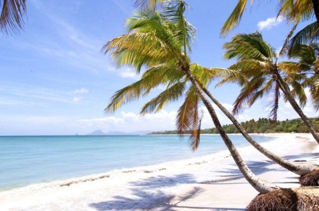 Martinique : Hôtel La Pagerie