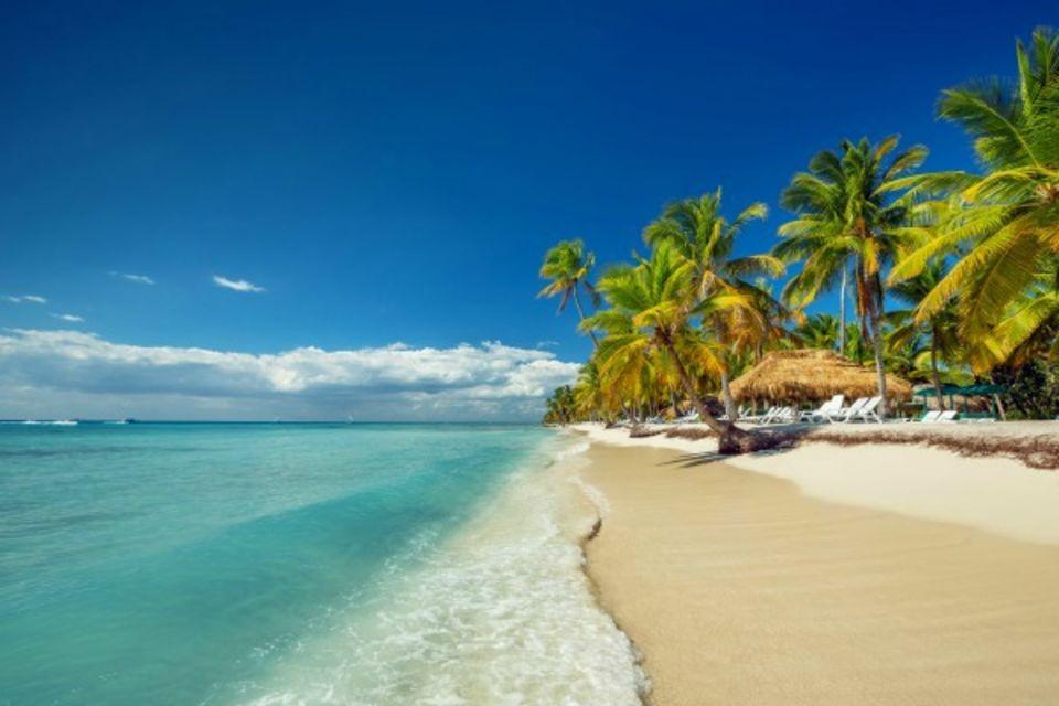 Club Framissima Royalton Splash Punta Cana Beach & Resort Punta Cana Republique Dominicaine