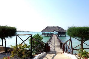 Zanzibar-Zanzibar, Hôtel combiné Plage de Jambiani & Safari Selous 3*