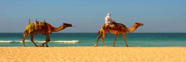 Autres - Le Grand Hotel Djerba 3* Djerba Tunisie