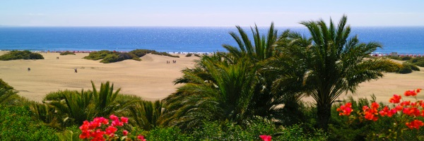 Piscine - Gloria Palace San Agustin Thalasso & Hotel 4* Las Palmas Grande Canarie